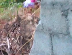 Indian maid aunty peeing outdoor-3
